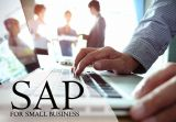 SAP Small Business Solutions - Vestrics-Services-Other Services-Hyderabad