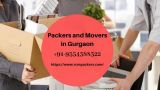 Professional Packers and Movers in Gurgaon-Services-Moving & Storage Services-Delhi