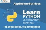 Learn python programming-Services-Other Services-Delhi