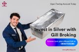 Why Silver Trading Is The Only Skill You Really Need-Services-Insurance & Financial Services-Delhi