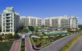 DLF The Aralias-Services-Real Estate Services-Gurgaon