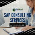 SAP Consulting Services-Services-Other Services-Jersey City