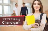 Looking for Best IELTS Training in Chandigarh-Classes-Other Classes-Chandigarh