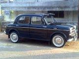 FIAT VINTAGE AND CLASSIC CARS KERSI SHROFF AUTO DEALER-Vehicles-Cars-Fiat-Mumbai