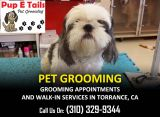 Puppy Nail Trimming Torrance CA-Pets-Pet Services-Los Angeles