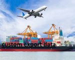 custom export data-Services-Other Services-Delhi