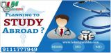 Study Abroad Consultants in Indore-Jobs-Education & Training-Indore
