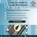 Take One Step Forward for Crude Oil Trading-Services-Insurance & Financial Services-Delhi