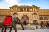 Book Travel Guide to Explore Destinations And Packages-Services-Travel Services-Delhi