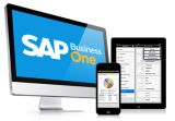 SAP Business One Project Management-Services-Other Services-Hyderabad