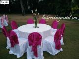 Wedding Supply Rentals, Party And Event Rentals, Bangalore, -Services-Event Services-Bangalore