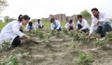 Top Bsc Agriculture Coaching in Chandigarh-Classes-Other Classes-Chandigarh
