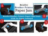 Resolve Brother Printer Paper Jam Error with No Paper Jammed-Services-Web Services-New York