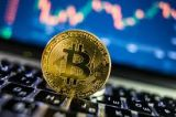 Price of BTC in India-Services-Other Services-Jaipur