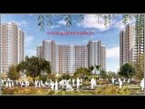 Must know the things before buying Godrej royale woods-Services-Real Estate Services-Bangalore