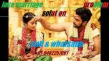 love marriage solution in 24 hours by guru ji call now-Services-Astrology-Bangalore