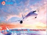 Get Medical Facility and Low-Fare Air Ambulance in Chennai-Services-Health & Beauty Services-Health-Chennai