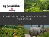 Release Ads in Assam Tribune Newspaper at Best Rates-Services-Creative & Design Services-Kolkata